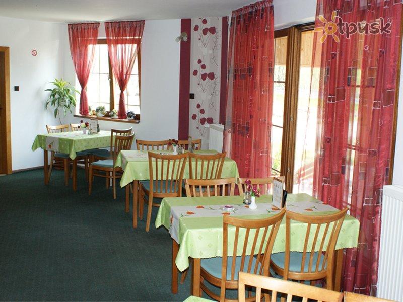 Фото отеля Penzion Family 2* Жилина Словакия