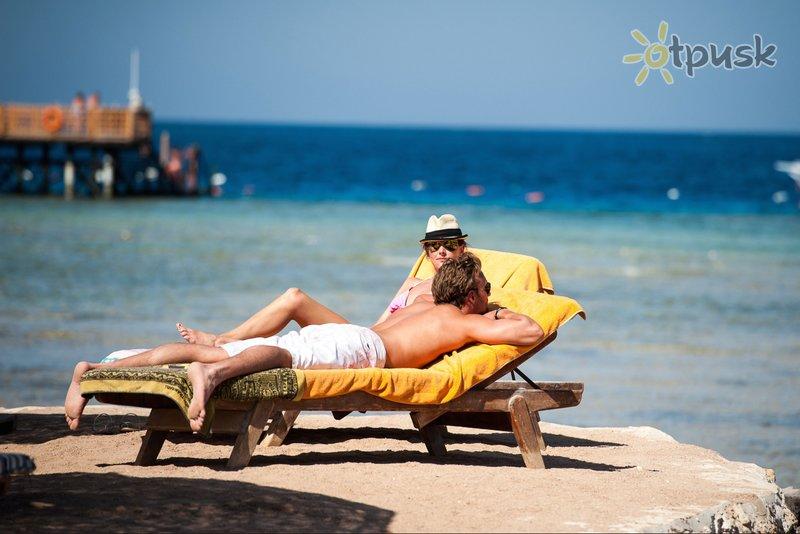 Фото отеля The Grand Makadi 5* Макади Бей Египет