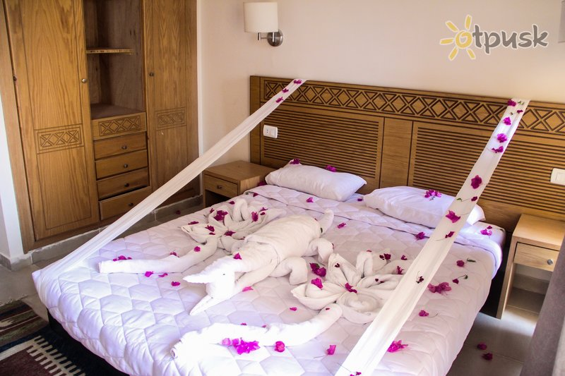 Фото отеля Zahabia Hotel & Beach Resort 3* Хургада Египет