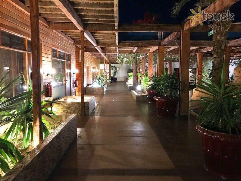 Фото отеля Lido Sharm Hotel 4* Шарм эль Шейх Египет