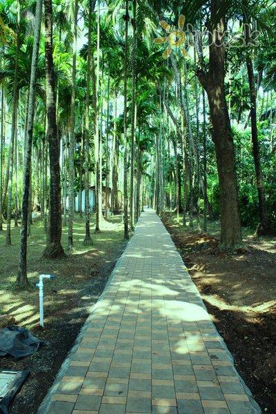 Фото отеля Arambol Paradise Village Resort 2* Северный Гоа Индия