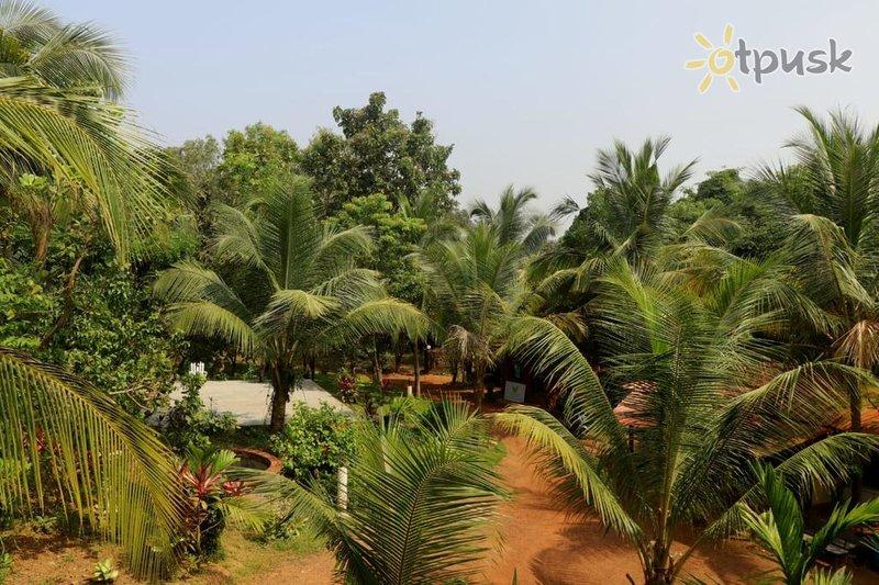 Фото отеля Butterfly Resort Goa 3* Северный Гоа Индия