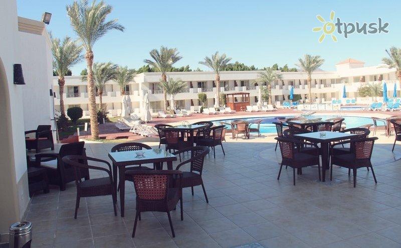 Фото отеля Viva Sharm Hotel 3* Шарм эль Шейх Египет