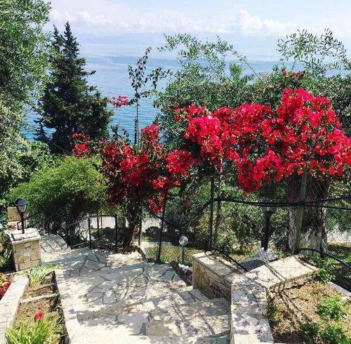 Тур в Casa dei Venti 1☆ Греция, о. Корфу